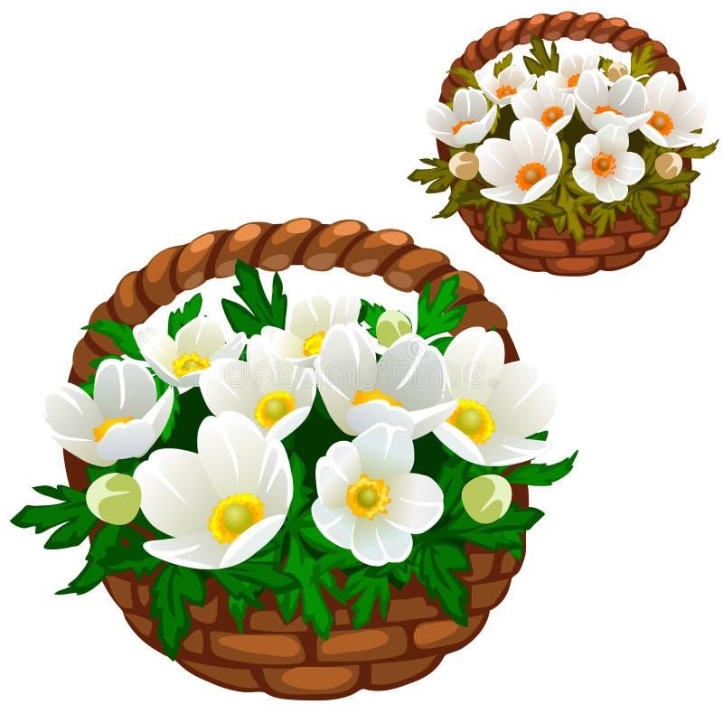 Όμορφη ανθοδέσμη των άσπρων λουλουδιών στο καλάθι αχύρου διανυσματική απεικόνιση