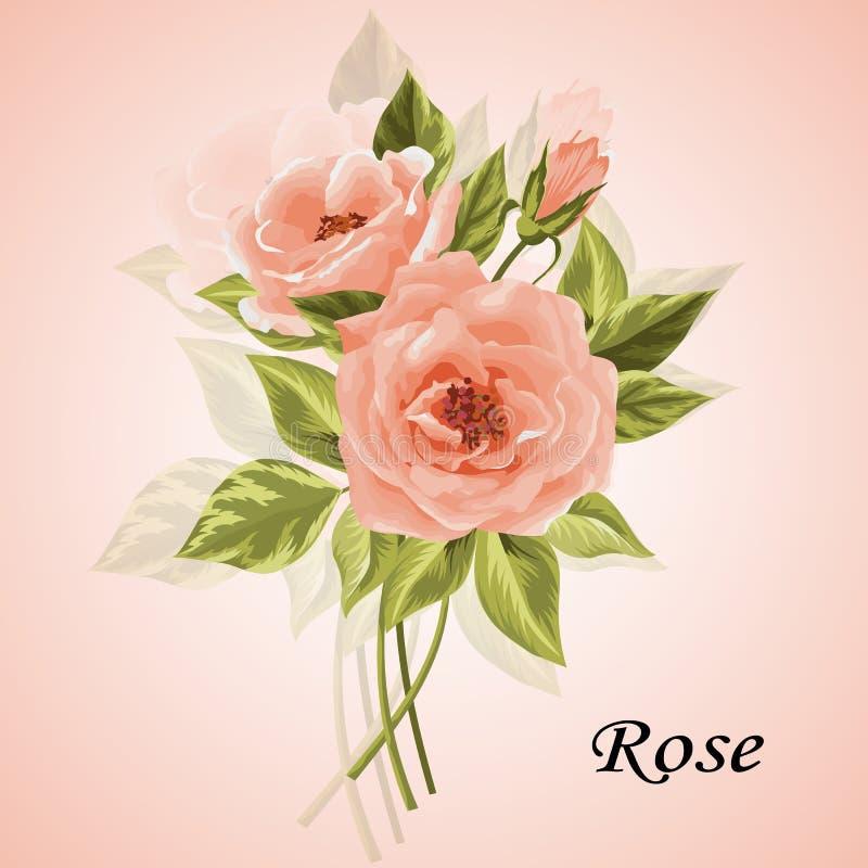 Όμορφη ανθοδέσμη των τριαντάφυλλων στο λευκό ελεύθερη απεικόνιση δικαιώματος