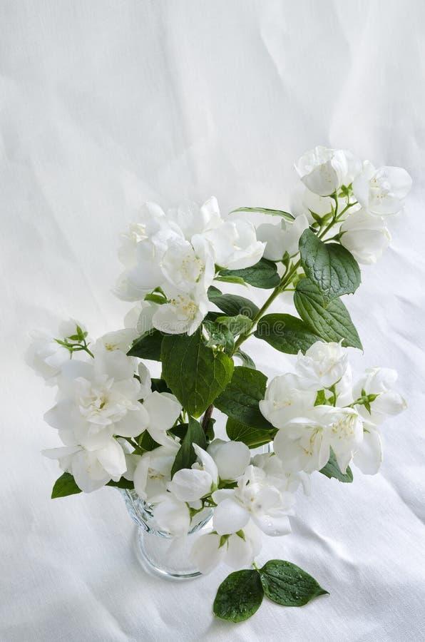Όμορφη ανθοδέσμη jasmine στο βάζο γυαλιού στο άσπρο τσαλακωμένο υπόβαθρο λινό στοκ εικόνα