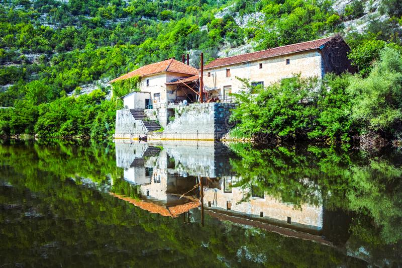 Όμορφη αντανάκλαση των δασικών, πράσινων Μπους σπιτιών, και βράχοι στη λίμνη Skadar, βαλκανική χερσόνησος, Μαυροβούνιο νερού στοκ φωτογραφία με δικαίωμα ελεύθερης χρήσης