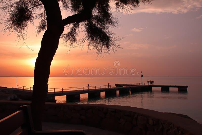 όμορφη απεικόνισης λιβαδιών ηλιόλουστη ανατολή άνοιξη φύσης θετική στοκ φωτογραφία με δικαίωμα ελεύθερης χρήσης