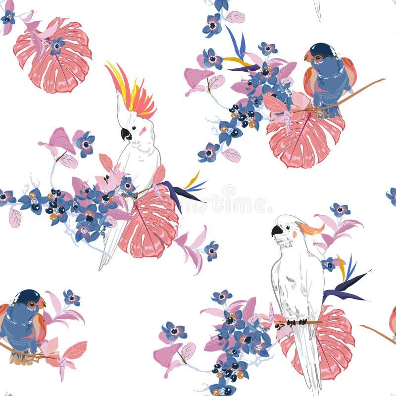 Όμορφη γλυκιά τροπική floral τυπωμένη ύλη Πουλί παπαγάλων στη ζούγκλα διανυσματική απεικόνιση