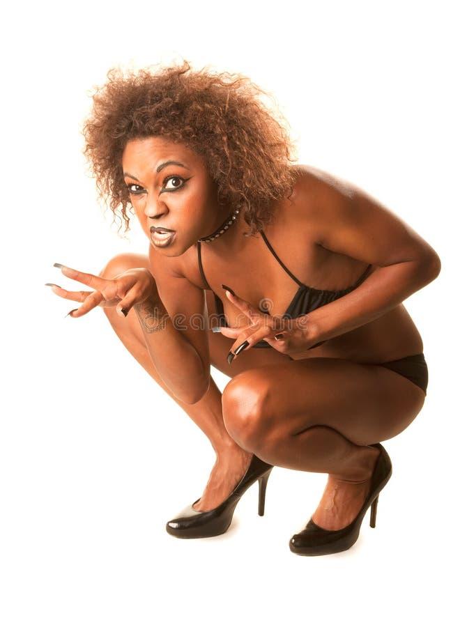 όμορφη γυναίκα γατών αφρο&alpha στοκ φωτογραφία με δικαίωμα ελεύθερης χρήσης
