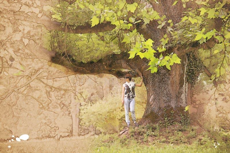 Όμορφη γυναίκα κάτω από το ογκώδες δέντρο σφενδάμνου, σκίτσο ελεύθερη απεικόνιση δικαιώματος