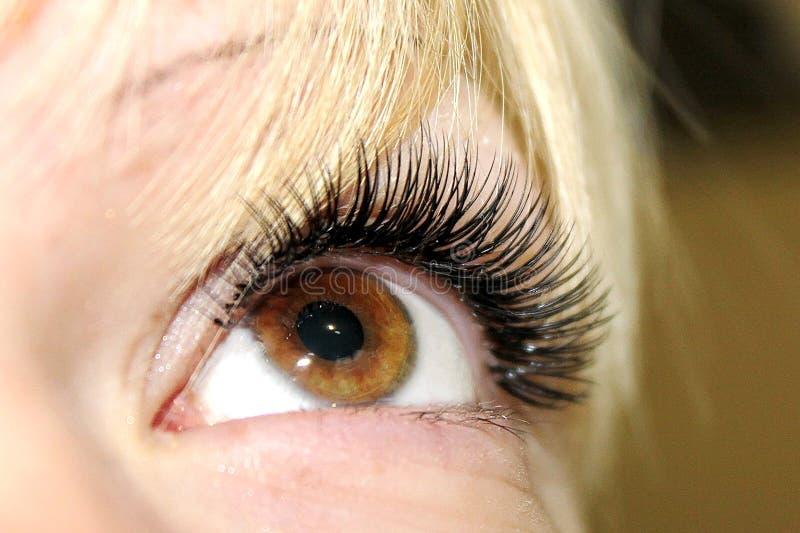 Όμορφη γυναίκα με τα μακροχρόνια μαστίγια σε ένα σαλόνι ομορφιάς Επέκταση Eyelash στοκ εικόνες