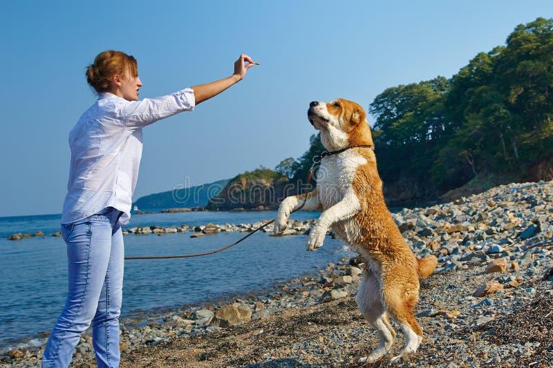 Όμορφη γυναίκα με το σκυλί της κοντά στη θάλασσα στοκ εικόνες