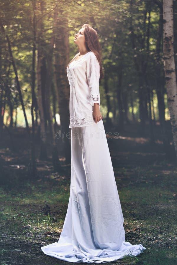 Όμορφη γυναίκα νεράιδων στο δάσος στοκ εικόνες