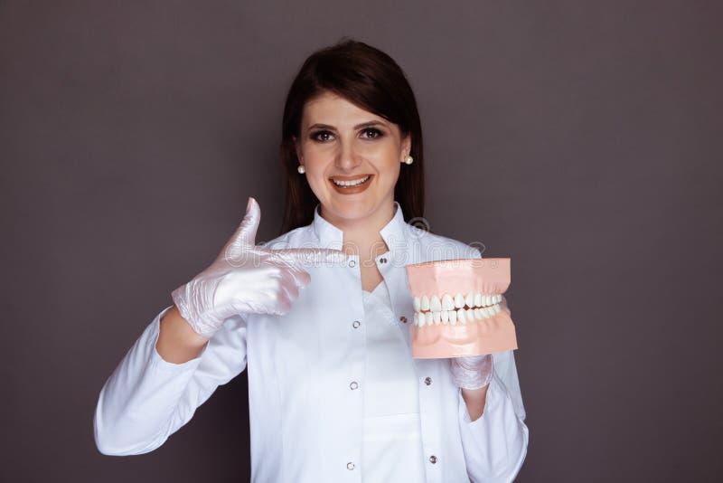 Όμορφη γυναίκα οδοντίατρος που δείχνει απομονωμένη στο σαγόνι μοντέλου στοκ φωτογραφίες