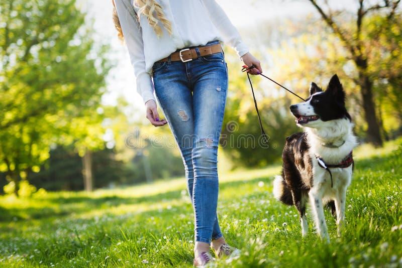 Όμορφη γυναίκα που περπατά το χαριτωμένο σκυλί στη φύση στοκ εικόνες