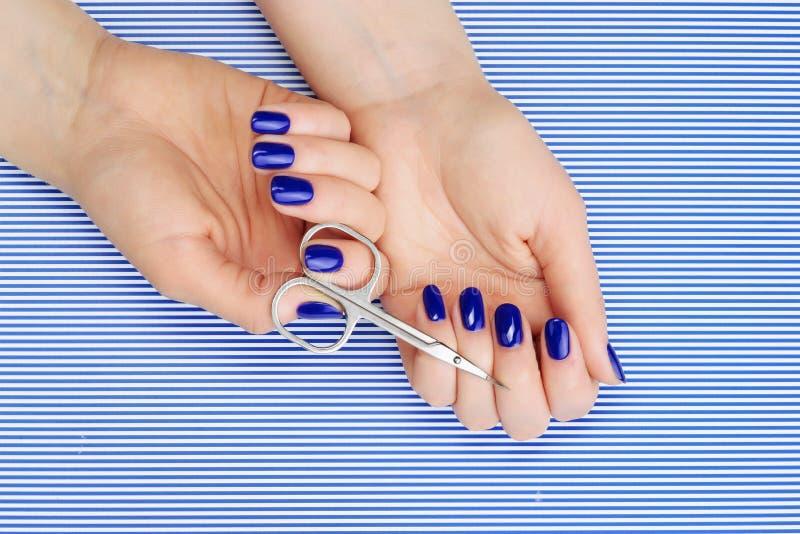 Όμορφη διαδικασία μανικιούρ Βερνίκι νυχιών που εφαρμόζεται στο χέρι, το πολωνικό είναι μπλε χρώμα στοκ εικόνα