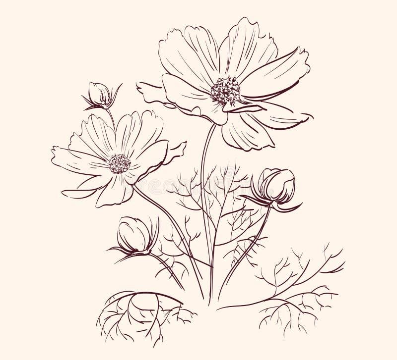 Όμορφη διανυσματική απεικόνιση συνόρων λουλουδιών διανυσματική απεικόνιση