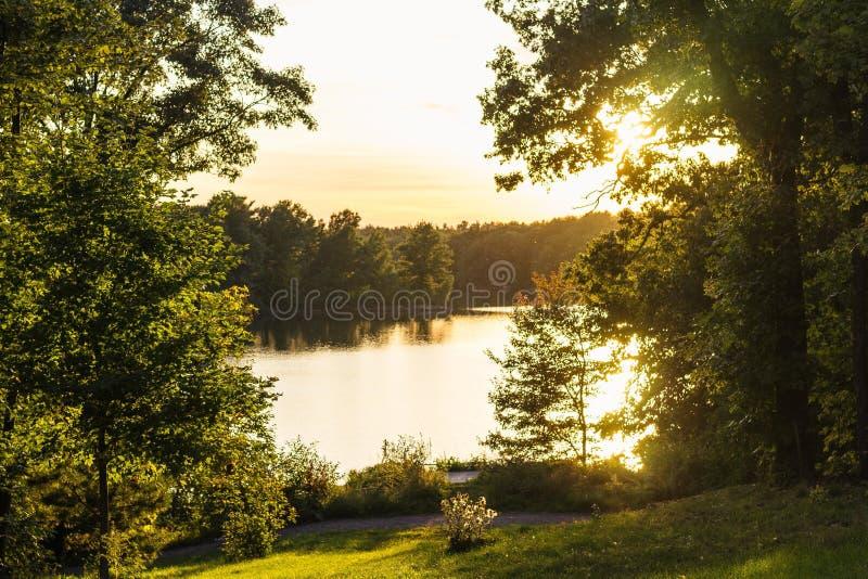 Όμορφη θάλασσα κοντά σε ένα πάρκο μια ηλιόλουστη ημέρα με τα δέντρα στο υπόβαθρο στοκ εικόνα με δικαίωμα ελεύθερης χρήσης