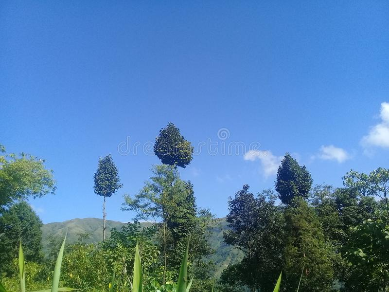 Όμορφη θέση του Νεπάλ στοκ εικόνες με δικαίωμα ελεύθερης χρήσης
