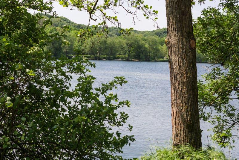 Όμορφη θερινή ημέρα σε μια λίμνη στοκ φωτογραφία