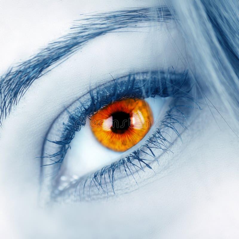 όμορφη θηλυκή μορφή ματιών στοκ φωτογραφία