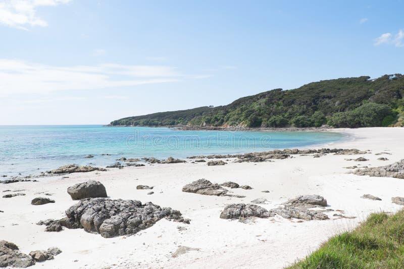 Όμορφη κενή παραλία στη χερσόνησο Karikari, ο μακρινός Βορράς, Northlan στοκ εικόνες