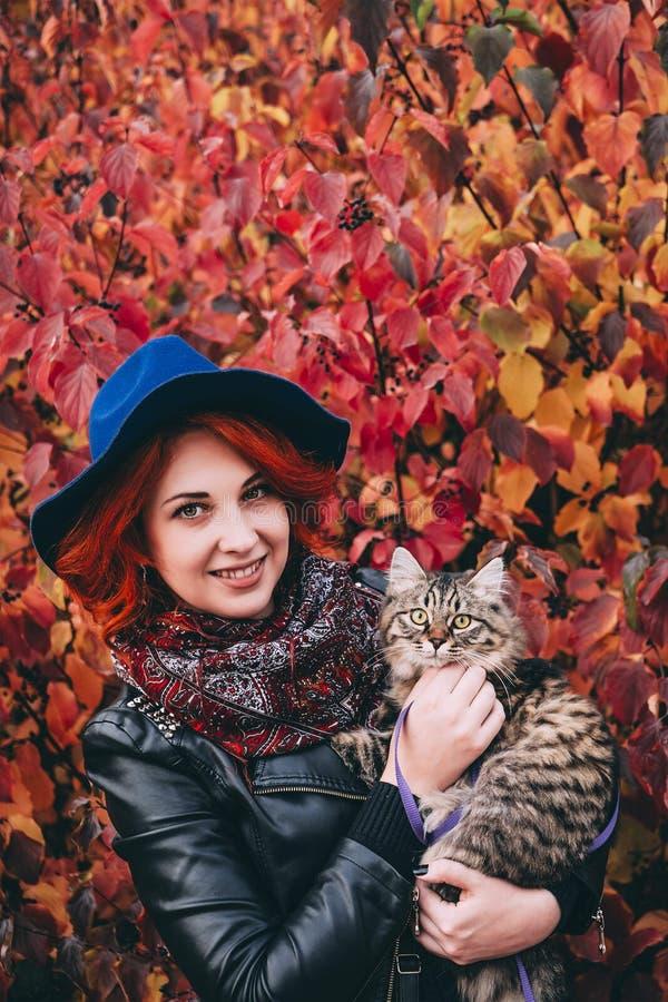 Όμορφη κοκκινομάλλης γυναίκα στο μπλε σακάκι καπέλων και δέρματος που περπατά με τη γάτα στο κόκκινο πάρκο φθινοπώρου στοκ φωτογραφία