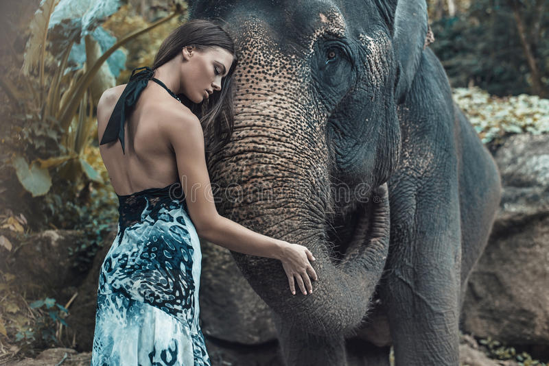 Όμορφη κυρία που αγκαλιάζει έναν καλό ινδικό ελέφαντα στοκ εικόνα με δικαίωμα ελεύθερης χρήσης