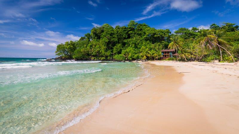 Όμορφη κόκκινη παραλία βατράχων, Bocas del Toro, Παναμάς στοκ εικόνες