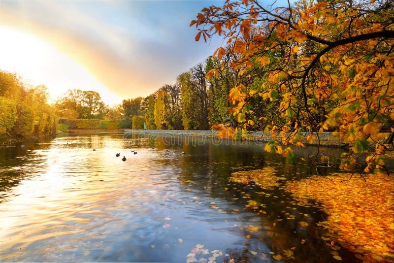Όμορφη λίμνη πάρκων το φθινόπωρο στο ηλιοβασίλεμα στοκ φωτογραφία με δικαίωμα ελεύθερης χρήσης