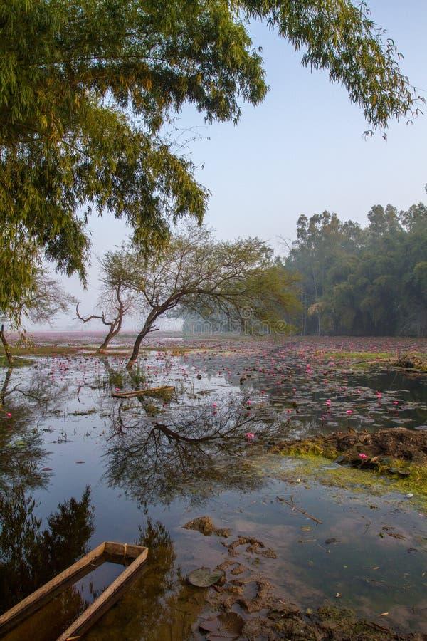 Όμορφη λίμνη landsacape με την καλλιέργεια λουλουδιών δέντρων και λωτού βαρκών στοκ φωτογραφία με δικαίωμα ελεύθερης χρήσης