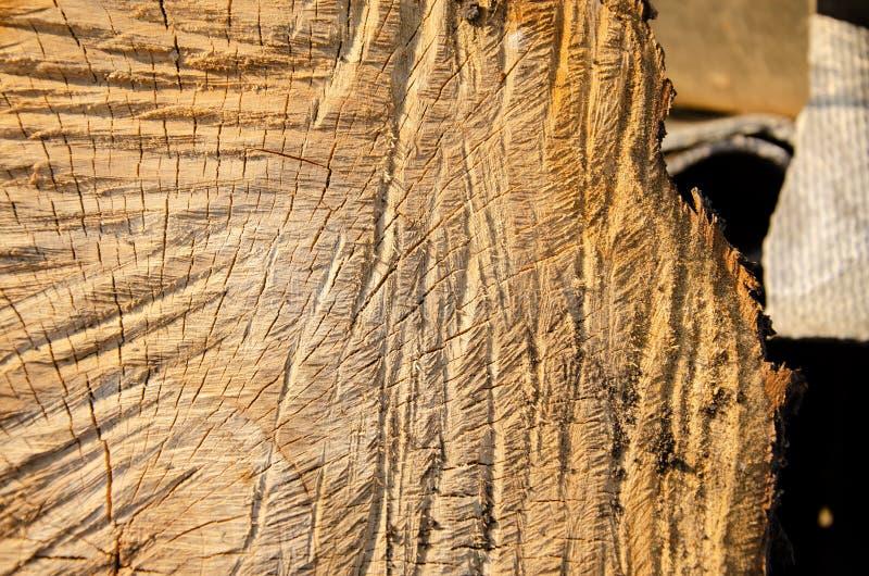 Όμορφη μακρο σύσταση των πετρών, διάβρωση, ξύλινα εγχώρια αντικείμενα  στοκ φωτογραφία με δικαίωμα ελεύθερης χρήσης