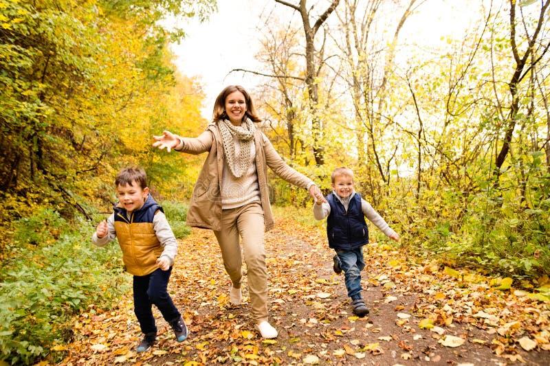 Όμορφη μητέρα με τους γιους της στο δάσος φθινοπώρου στοκ εικόνα με δικαίωμα ελεύθερης χρήσης