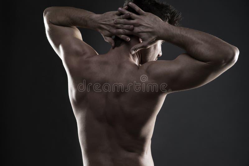 Όμορφη μυϊκή τοποθέτηση bodybuilder στο γκρίζο υπόβαθρο Συγκρατημένος πυροβολισμός στούντιο στοκ εικόνα με δικαίωμα ελεύθερης χρήσης