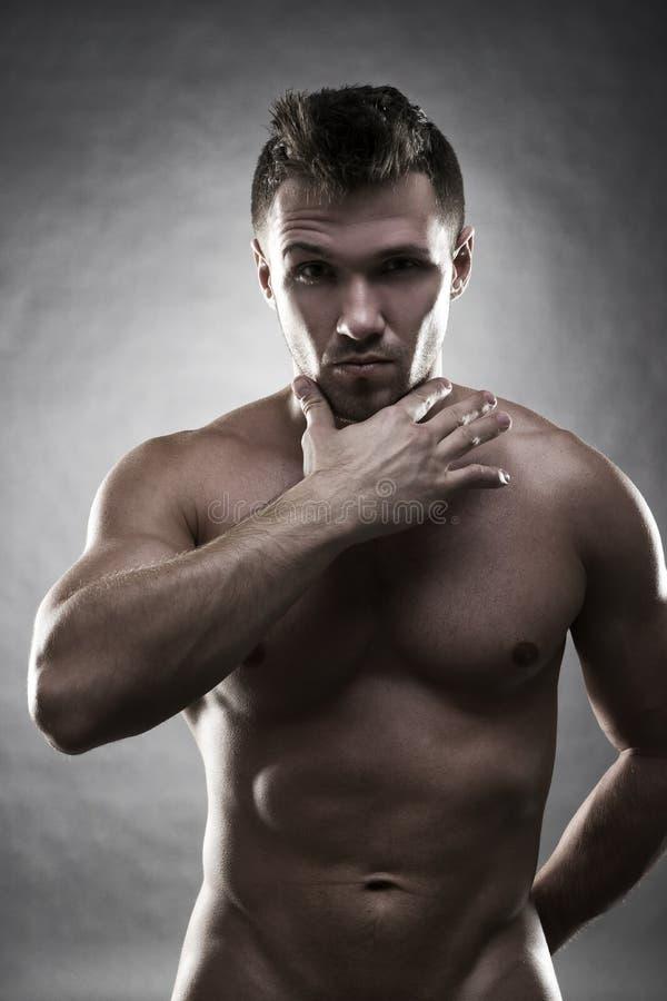 Όμορφη μυϊκή τοποθέτηση bodybuilder στο γκρίζο υπόβαθρο Συγκρατημένος πυροβολισμός στούντιο στοκ φωτογραφία με δικαίωμα ελεύθερης χρήσης