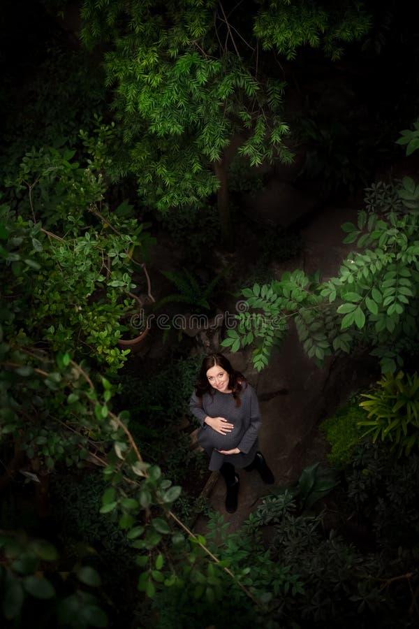 Όμορφη νέα έγκυος καυκάσια γυναίκα που μιλά έναν περίπατο στα fores στοκ φωτογραφίες με δικαίωμα ελεύθερης χρήσης