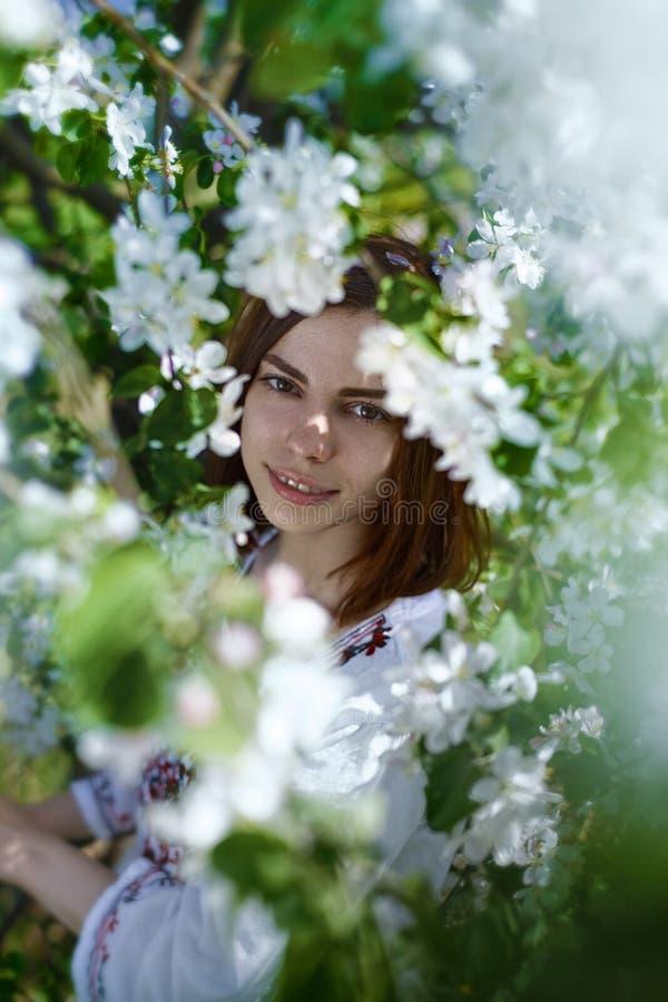 Όμορφη νέα γυναίκα κοντά στο δέντρο μηλιάς στοκ εικόνα με δικαίωμα ελεύθερης χρήσης