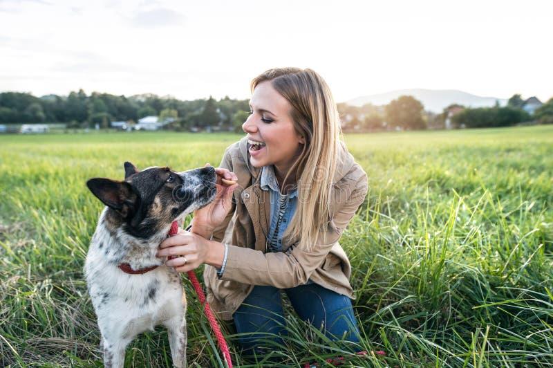 Όμορφη νέα γυναίκα με το σκυλί στην πράσινη ηλιόλουστη φύση στοκ εικόνα με δικαίωμα ελεύθερης χρήσης