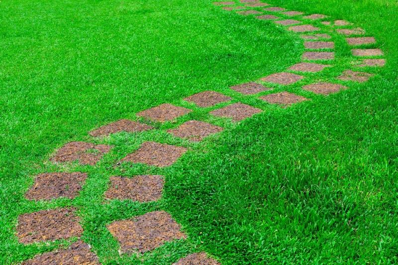 Όμορφη να περπατήσει πορεία πετρών μέσω του πράσινου χορτοτάπητα χλόης στοκ φωτογραφία με δικαίωμα ελεύθερης χρήσης