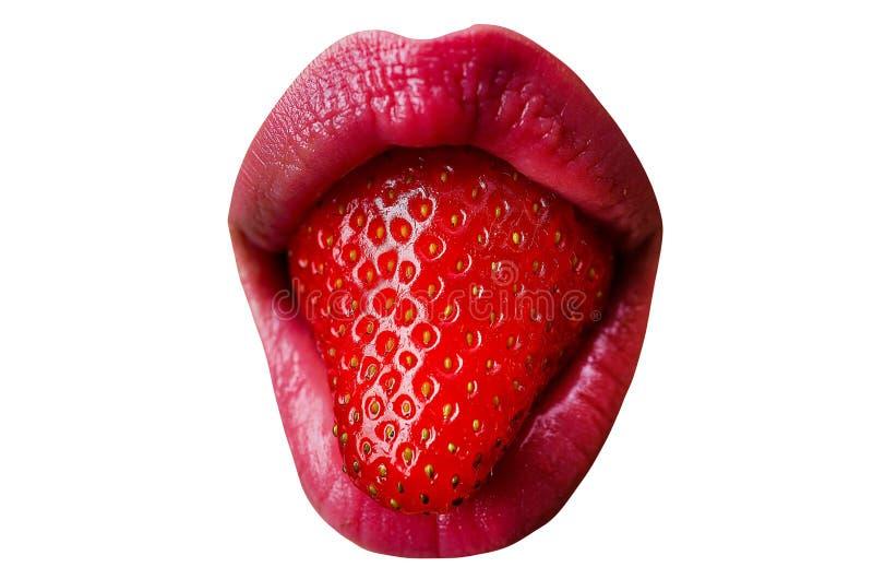Όμορφη νεαρή γυναίκα με φράουλα στο στόμα, κλείσιμο Σέξι φαγητό Νόστιμα χείλη Θηλυκό στόμα απομονωμένο σε λευκό στοκ εικόνες
