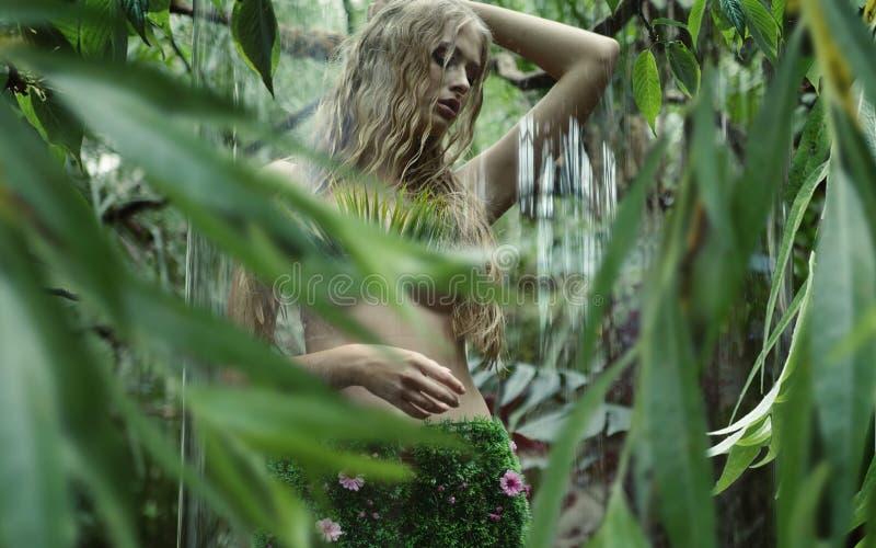 Όμορφη νύμφη στο κλουβί γυαλιού στοκ φωτογραφίες με δικαίωμα ελεύθερης χρήσης