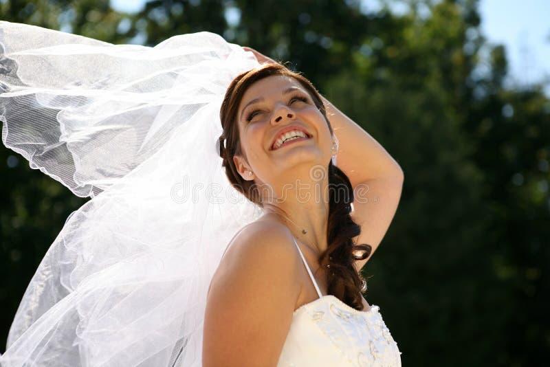 όμορφη νύφη στοκ εικόνες με δικαίωμα ελεύθερης χρήσης