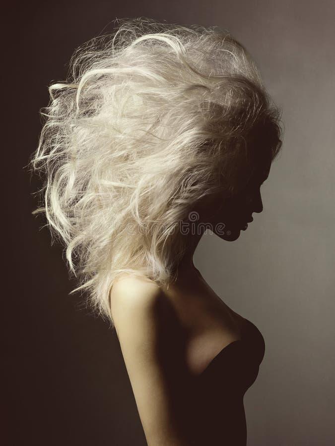 Όμορφη ξανθή γυναίκα με τον όγκο hairstyle στοκ εικόνα με δικαίωμα ελεύθερης χρήσης