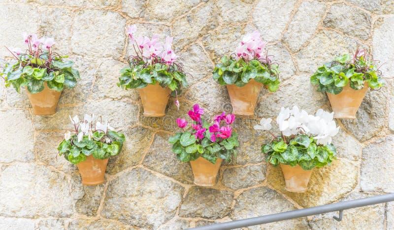 Όμορφη οδός σε Valldemossa με το παραδοσιακό decorati λουλουδιών στοκ φωτογραφίες
