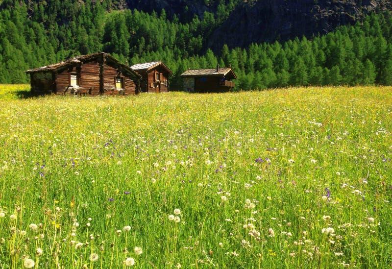 Όμορφη πανοραμική άποψη καρτών του γραφικού αγροτικού τοπίου βουνών στις Άλπεις με τα παραδοσιακά παλαιά αλπικά εξοχικά σπίτια βο στοκ φωτογραφίες με δικαίωμα ελεύθερης χρήσης