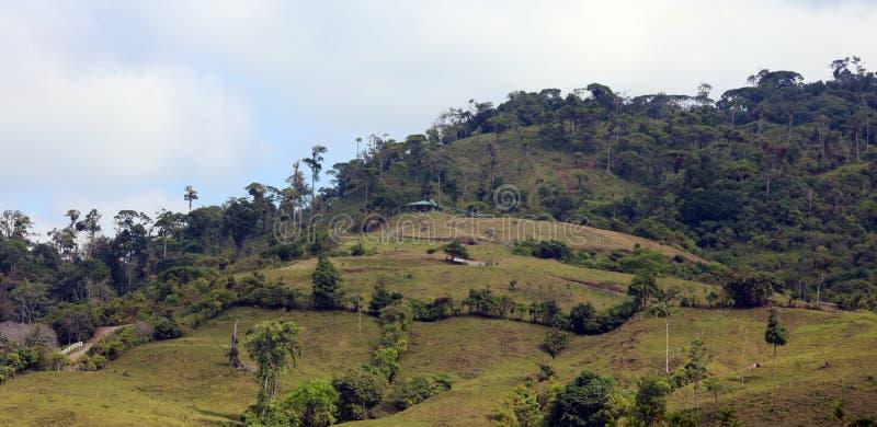Όμορφη πανοραμική άποψη των σπιτιών στα βουνά στη Κόστα Ρίκα με την πράσινη ζούγκλα στοκ εικόνα