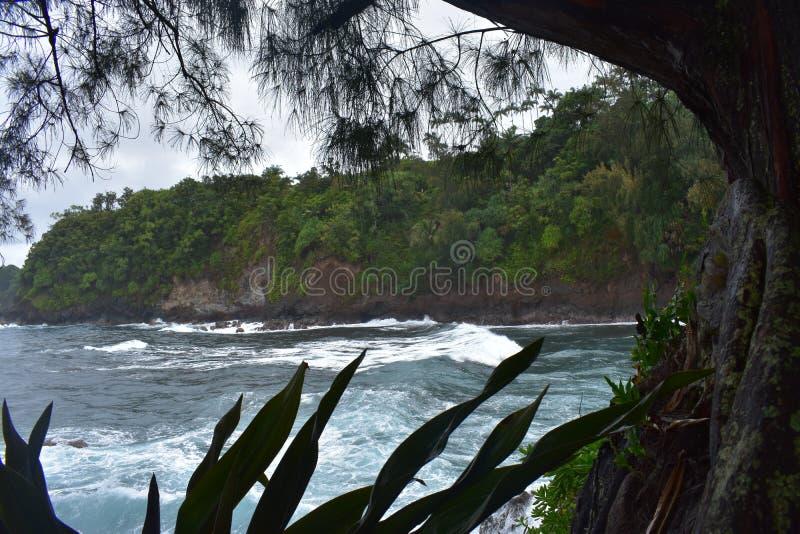 Όμορφη παράκτια ακτή στη Χαβάη με τα κύματα που συντρίβουν αργά στην ακτή στοκ εικόνα