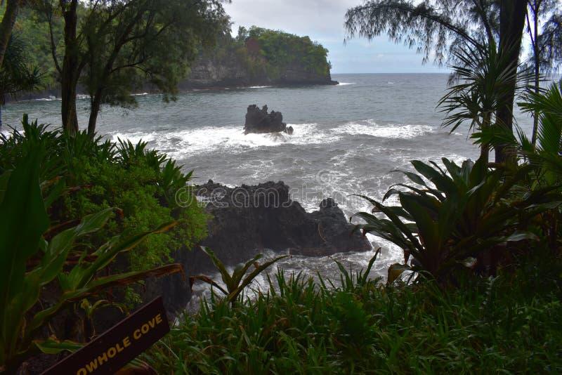 Όμορφη παράκτια ακτή στη Χαβάη με τα κύματα που συντρίβουν αργά στην ακτή στοκ φωτογραφίες με δικαίωμα ελεύθερης χρήσης