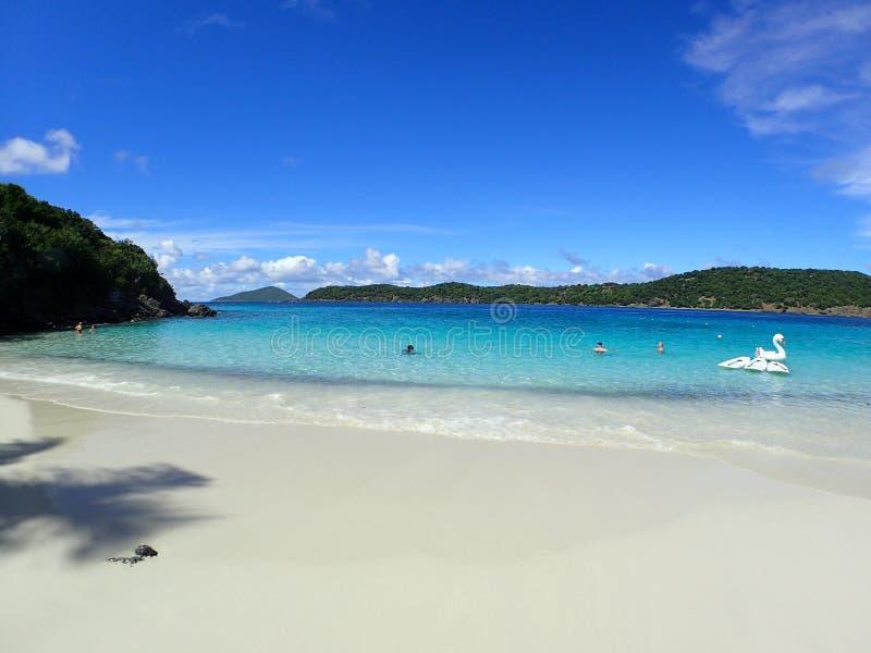 Όμορφη παραλία στο USVI στοκ εικόνες