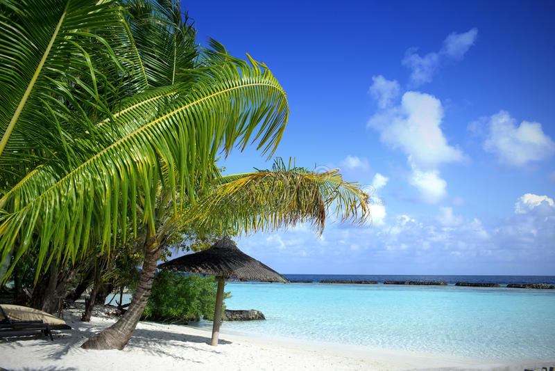 Όμορφη παραλία με την μπλε θάλασσα & το μπλε ουρανό στοκ φωτογραφία με δικαίωμα ελεύθερης χρήσης