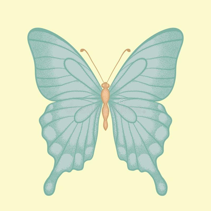 Όμορφη πεταλούδα στο hand-drawn γραφικό ύφος στα εκλεκτής ποιότητας χρώματα διανυσματική απεικόνιση