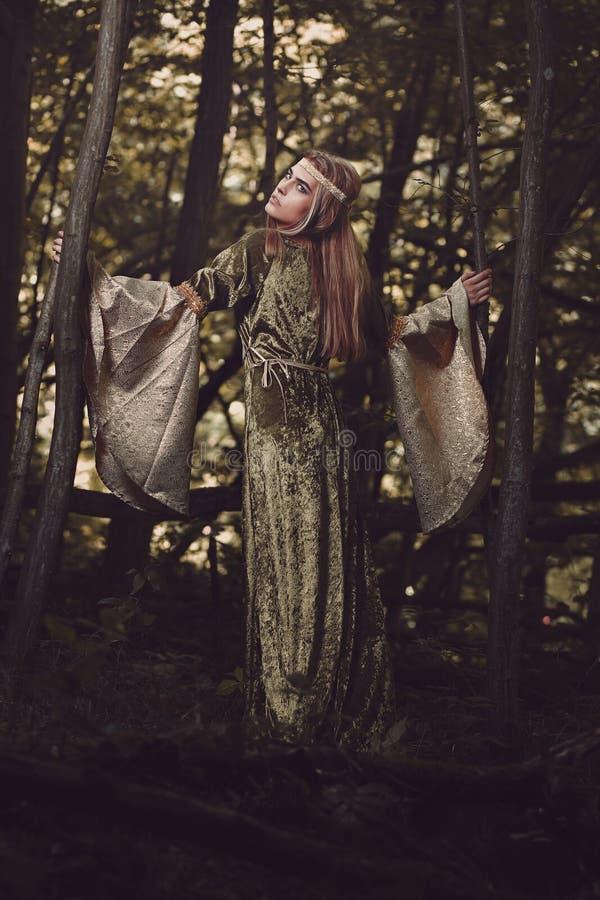 Όμορφη πριγκήπισσα των ξύλων στοκ φωτογραφίες