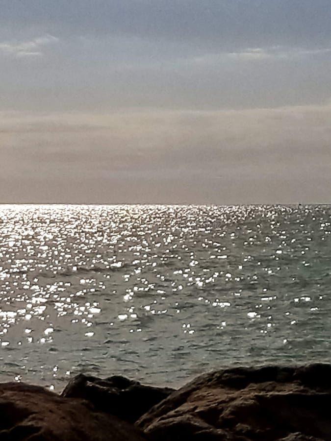 Όμορφη ρύθμιση Βενετία Φλώριδα νερού στοκ εικόνα