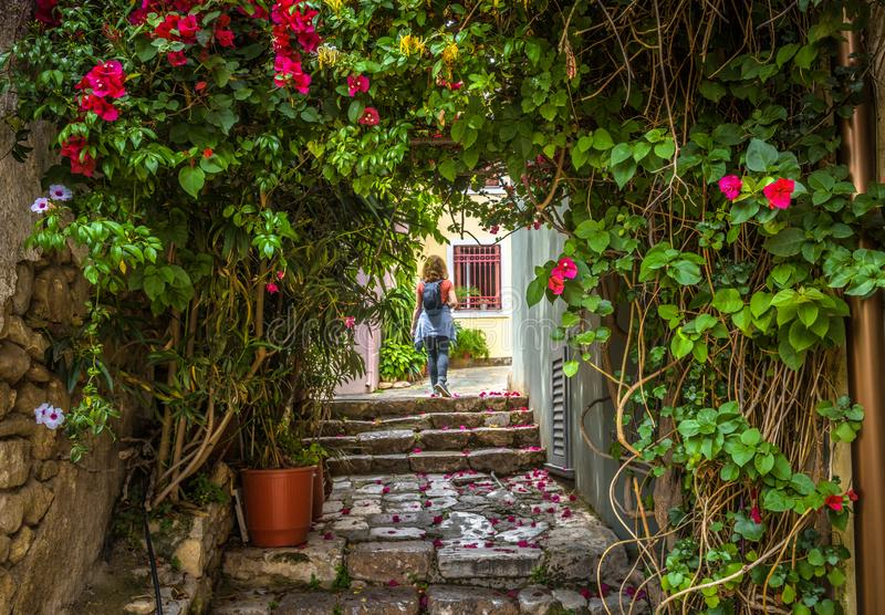Όμορφη στενή οδός με τα λουλούδια στην περιοχή της Πλάκας, Αθήνα, Ελλάδα στοκ εικόνα