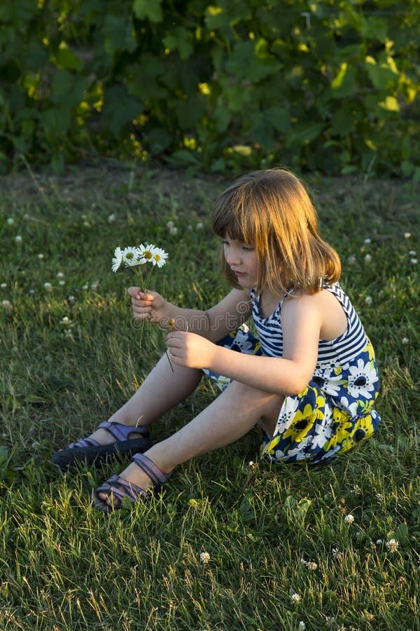 Όμορφη συνεδρίαση μικρών κοριτσιών στο χορτοτάπητα που κρατά μια μικρή ανθοδέσμη των wildflowers στοκ εικόνες