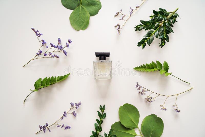 Όμορφη σύνθεση με το μπουκάλι του αρώματος και των πράσινων φύλλων στο άσπρο υπόβαθρο στοκ εικόνες με δικαίωμα ελεύθερης χρήσης